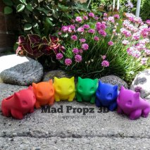 Rainbow  Bulbas!